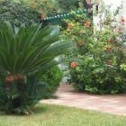 construccio jardin manolo2